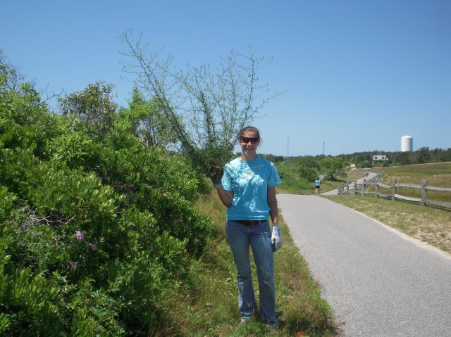 NCF Field Assistant Nora Harkness with invasive spotted knapweed, Tupancy Links, Nantucket