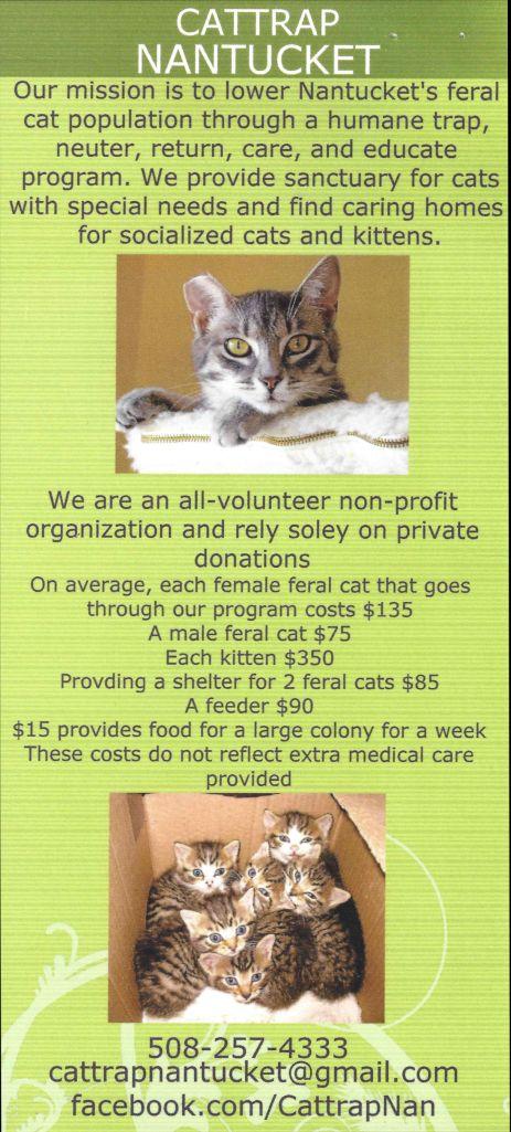 CatTrap Brochure1