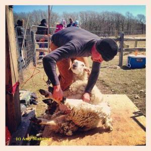 eric-shearing-2013