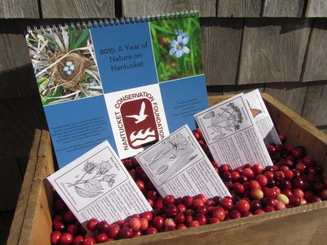 New at this year's Cranfest--a calendar prepared by NCF's Science and Stewardship Department. And back by popular request: locally collected native plant seeds.