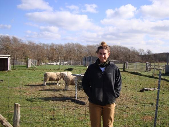 Connie with Sheep Nov 2014002
