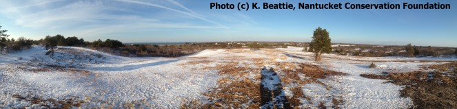 WM WRRP Mowing Shawkemo Hills Winter 2015 Panorama