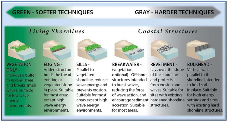 guidance-for-living-shorelines-in-the-sarasota-bay-watershed2